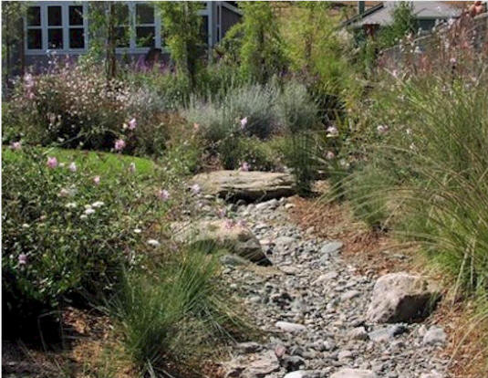Dry Creek Beds by Rittz Services serving Denver Metro